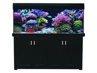 Aqua reef 500 fish tank excellent price!