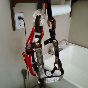 Yearling Show Halter