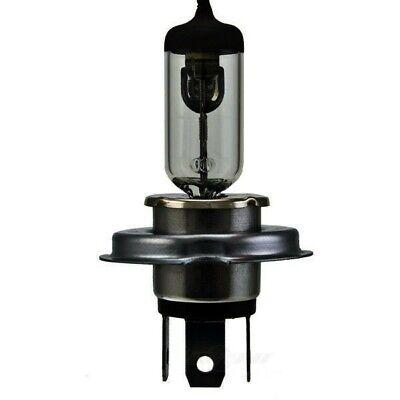 Hella Fog Light Bulb fits 1998-2001 Volkswagen Passat  HELLA
