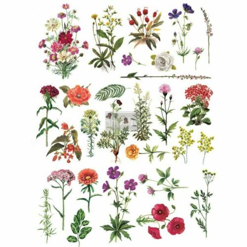 Re-Design with Prima FLORAL COLLECTION Transfer Home Decor - NEW