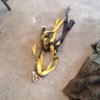 3 safety harnesses