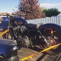 2013 HARLEY DAVIDSON FORTY EIGHT (48) LOW KM'S SPORTSTER 1200xl