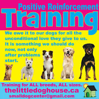 GOOD MANNERS Positive Reinforcement Training