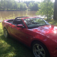 2010 Ford Mustang gt convertible AUT. AUBAINE  $22,495  WOW