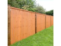 Fence Panels (Premium Finish Pressure Treated Golden Brown Timber)