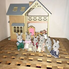 SYLVANIAN FAMILY AND HOUSE