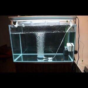 ... Pond-Pump-Hydroponics-Air-Stone-Bubble-Disk-Aerator-Aquarium-Fish-Tank