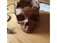 Skull USB Extension