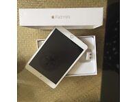 Mini iPad 3 16gb.