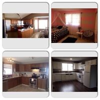 True North Painting & Decorating (Affordable/Reliable/Insured)