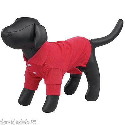 East Side Collection Kleiner Hund Mannequin Gefüllt Display Modell Manequin