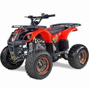 150CC KIDS FARM STYLE QUAD / ATV - FULLY ASSEMBLED Jimboomba Logan Area Preview