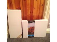 Canvases and Acrylic Paints