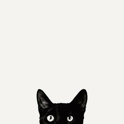 Black Cat Eyes Poster   Cute Funny Kitten Face Peeking Over Ledge At You Print