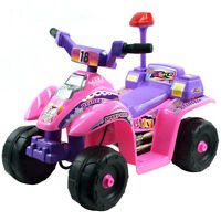Princess 4 wheel mini ATV 80-7018