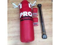 Pro Power 3ft Punch Bag