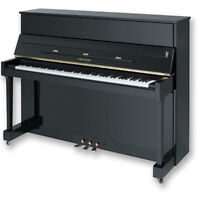 Cable-Nelson Piano, purchased 2007: $2500 ono