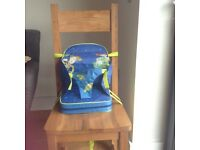 Toy story booster seat