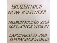 Frozen mice for sale