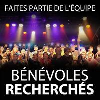Volunteer experience (Music Festival)