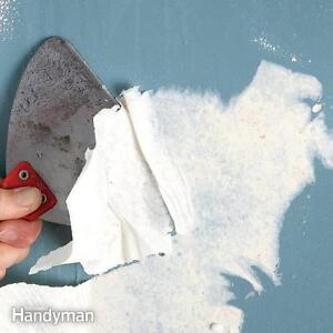 Professional!! Wallpaper Removal Service