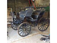 Pheaton 4 Wheel Carriage