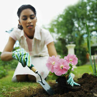 Gardening and flowerbeds