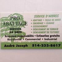 Service Arbre