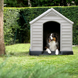 Medium sized plastic dog kennel