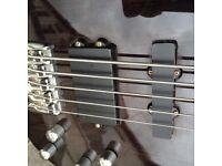 Shine 5 String Bass Trans black