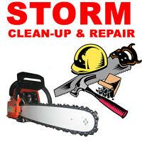 FALLEN TREE REMOVAL STORM EMERGENCY CLEAN UP