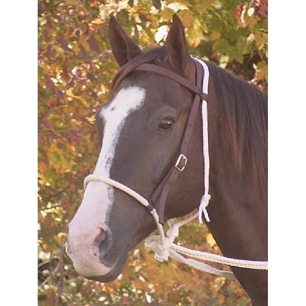 Nylon Breaking Hackamore Bridle NEW