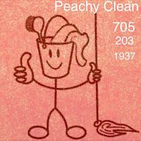 Peachy Clean- cleaning and organization solutions