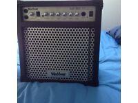 New Washburn guitar amp for sale