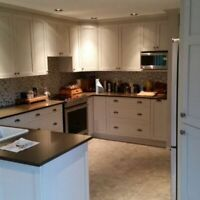 Kitchen Renovations - Kitchen Cabinets, Refacing & More