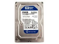 WD 250GB Sata Desktop Hard Disk