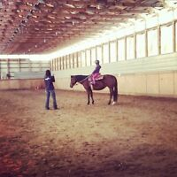 Private Horse Lessons JULY