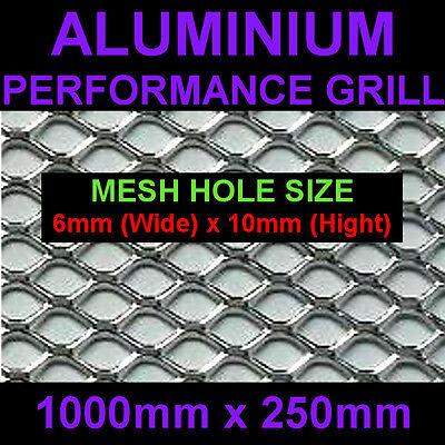 Silver Aluminium Racing Grille Net Vent Race Car Tuning 25x100cm Mesh 6x10mm