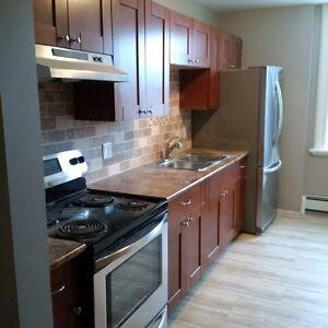 2 bedroom apartment in Walkerton
