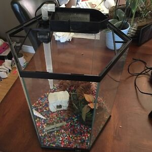 10 gallon hexagon fish tank