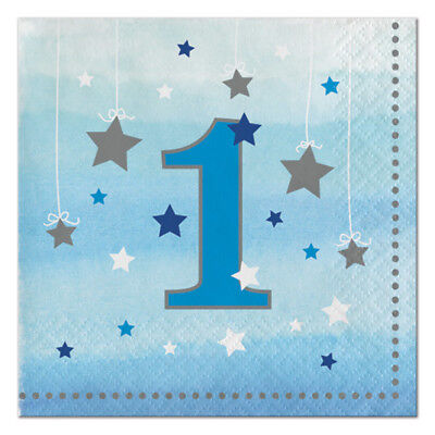Twinkle Twinkle Little One (Twinkle Twinkle One Little Star Boy 1st Birthday Party Supplies Small)