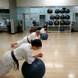 Adults Karate Classes in the Fall at the YMCA!! Peterborough Peterborough Area image 2