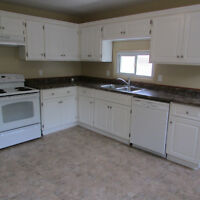DOWNTOWN 3 BEDROOM!!! NEW PRICE!!! INCLUDES HEAT!!
