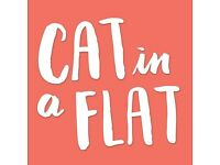 'Cat in a flat' Cat Sitter - daily visits, reasonable price