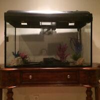 Aquarium 35 gallons