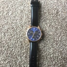 Bering Auto Watch (used only a couple of times)