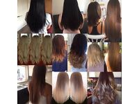 Mobile Hair extension/colour specialist covering Hampshire area