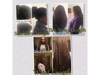 Afro-Caribbean Hairstylist