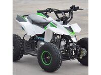 New 110cc thundercat kids quad bikes free uk delivery