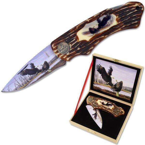 Folding Eagle Knife + High Quality Wood Display + Don
